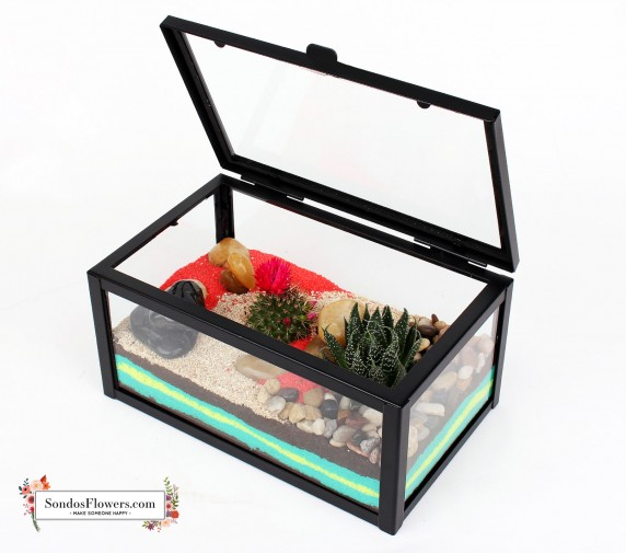 Tropi Plants Box